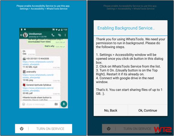 Enable WhatsTools Service