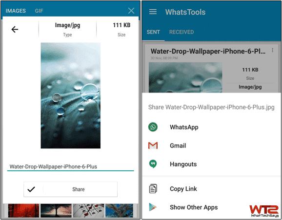 Send Any File On Whatsapp 2