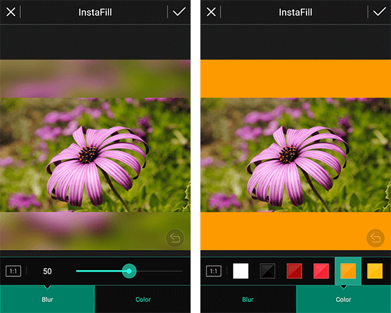 Photo Director InstaFill Set WhatsApp Profile Picture Without Cropping
