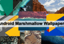 Android Marshmallow Stock Wallpapers