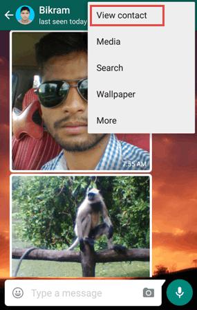 Whatsapp View Contact