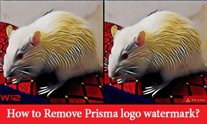 Remove Prisma Logo Watermark from Photos